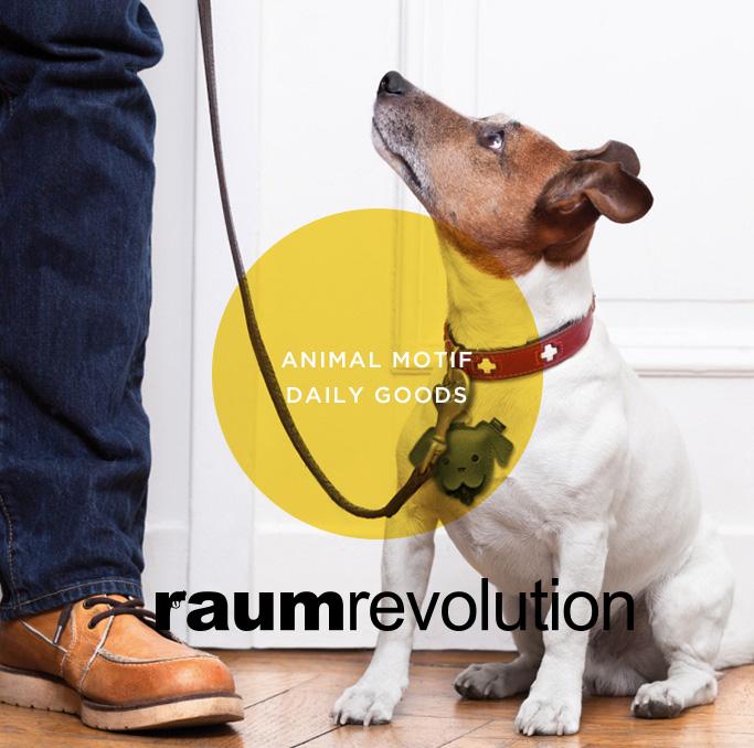 raum revolution